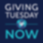 Giving Tuesday Now Logo 2020.png