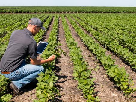 Ackerbaustrategie bis 2035 – eine Chance für alle?