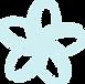 Spalala frangipani flower 213-239-242.pn