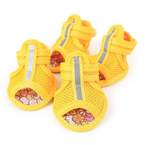 Sandalias de verano para perro