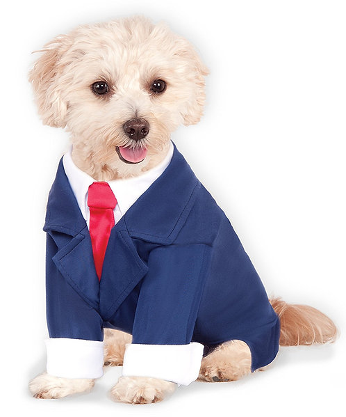 Business Suite para perro