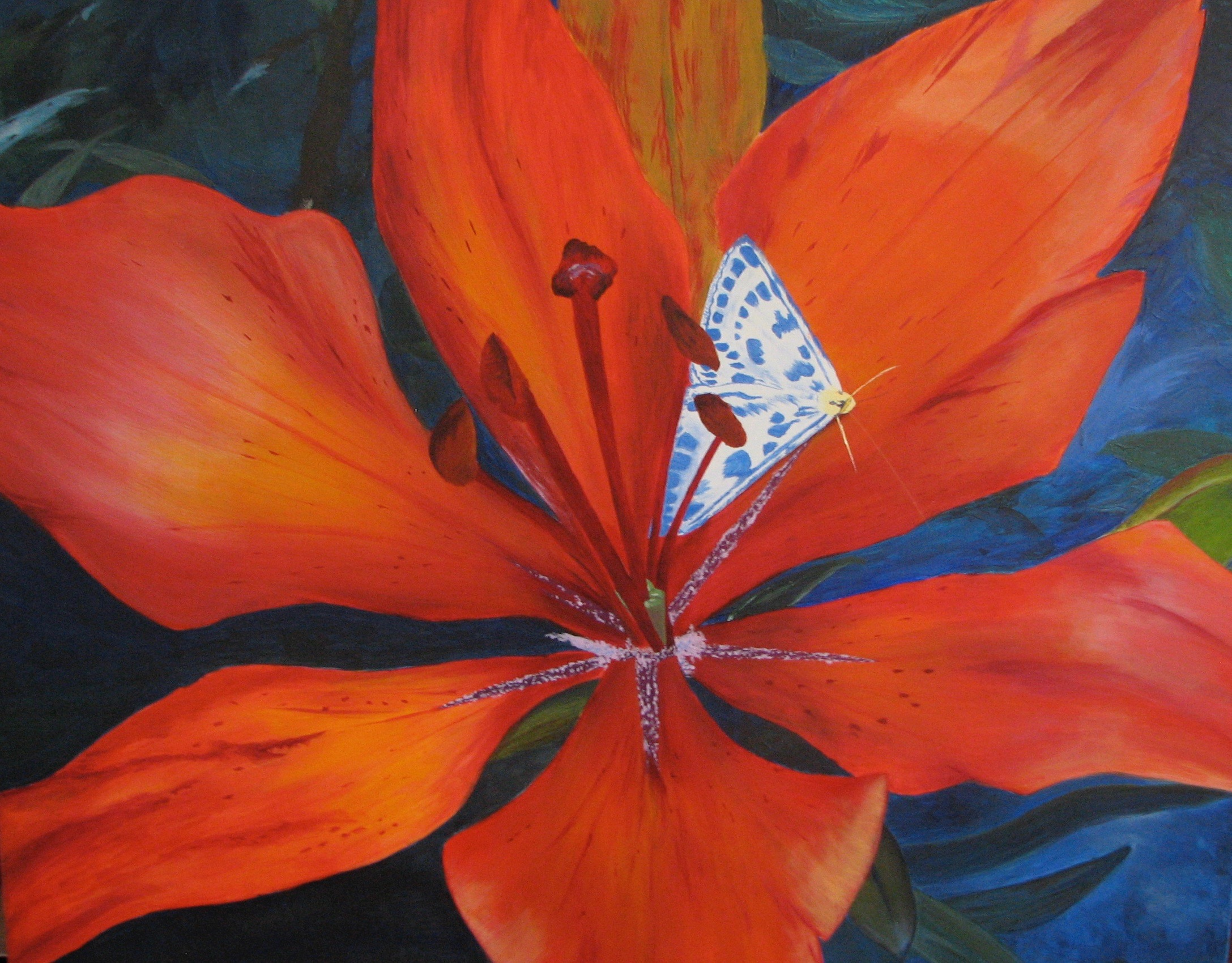 Butterfly in Lily