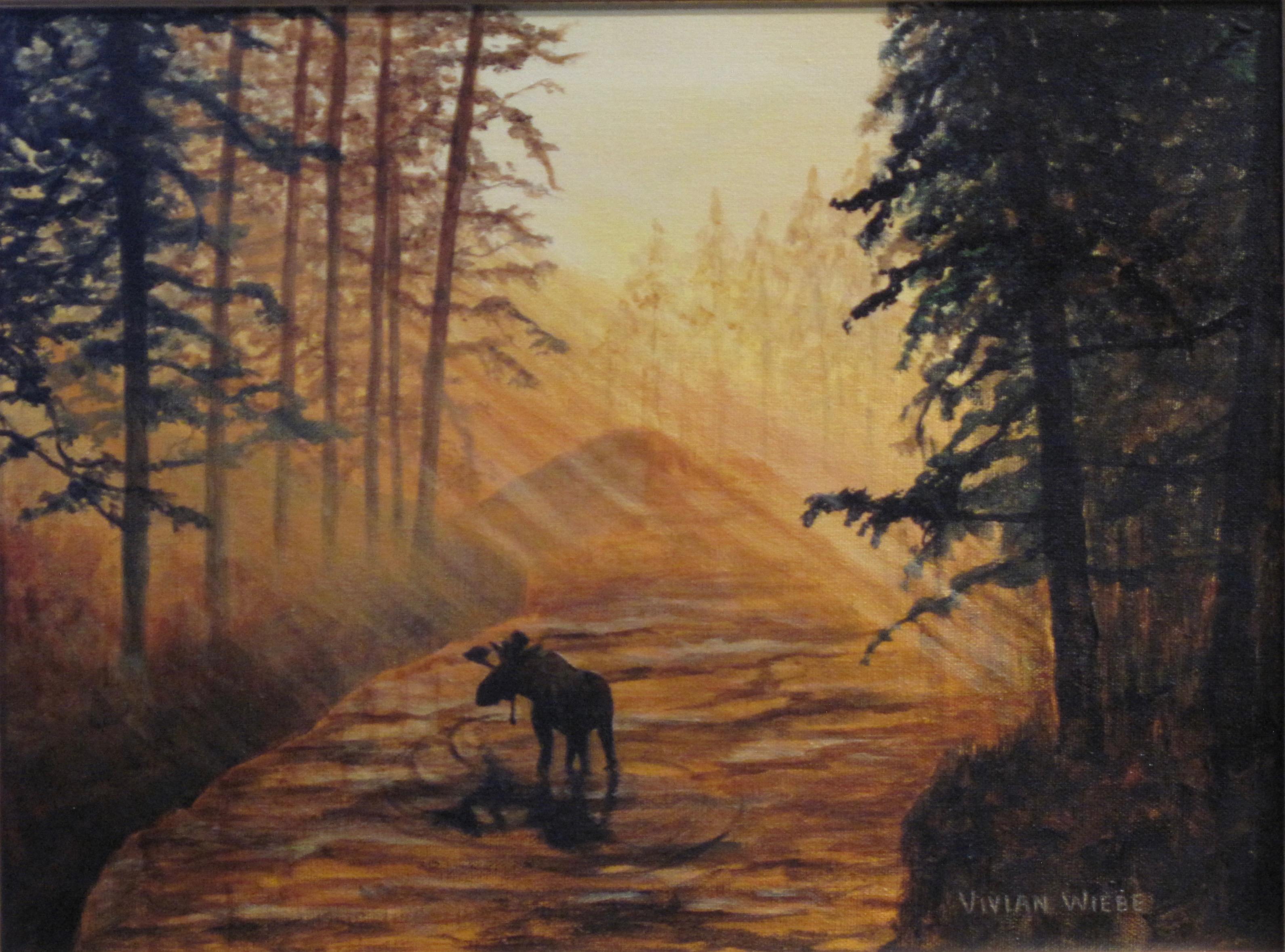 Moose at Dusk