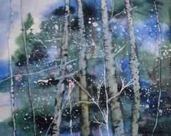 Snowy Birch Trees