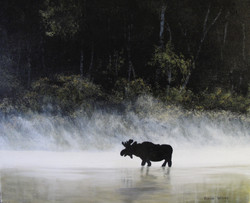 Moose in the Mist