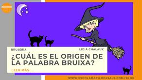 """¿CUÁL ES EL ORIGEN DE LA PALABRA """"BRUIXA""""?"""