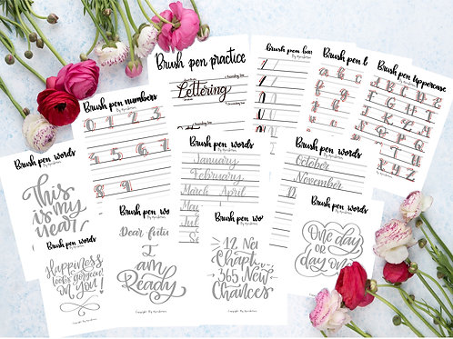 New Practice Worksheets