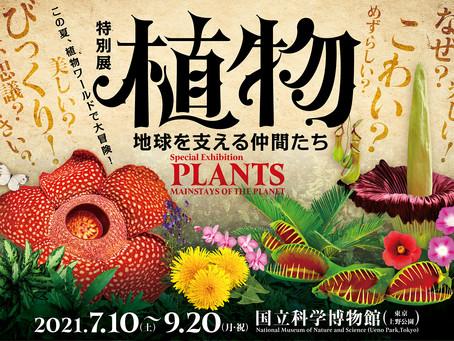 2021.07.01 特別展「植物 地球を支える仲間たち」