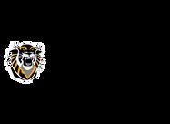 FHSU_University_logo.png
