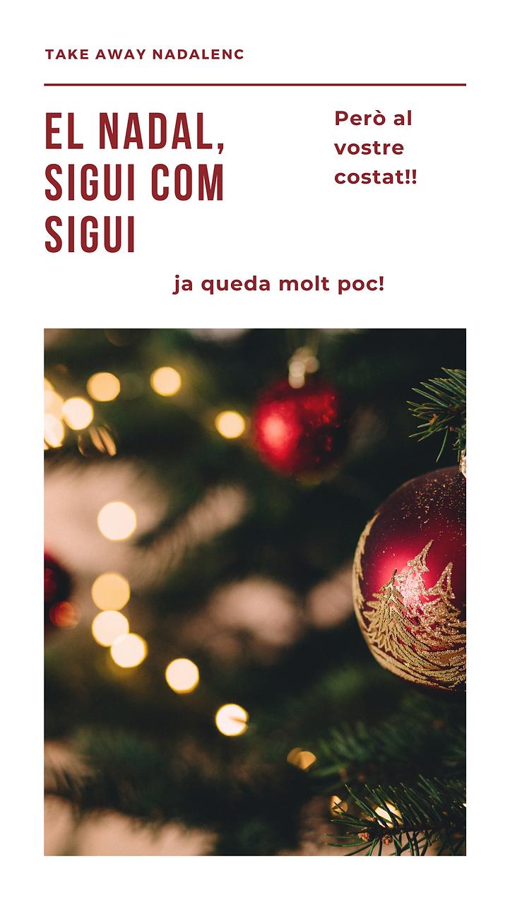 nadal portada1.png