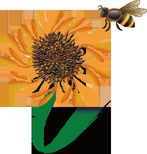 FlowernandBee.png