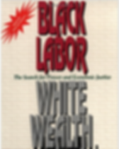 Black Labor White Wealth.png