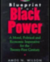 Blueprint%20for%20Black%20Power_edited.j