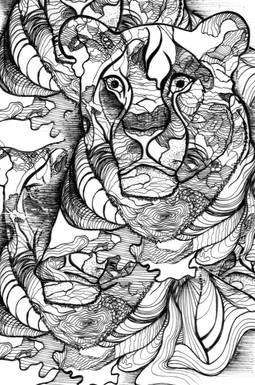 Illustration0 (37).jpg