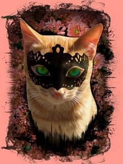 Cat illustration - Copy.jpg