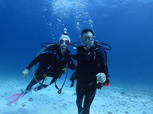 PADI Learn to Dive Course Gift