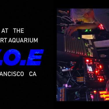 W.O.E. | Steinhart Aquarium | San Francisco