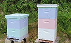 Pastel colored beehives