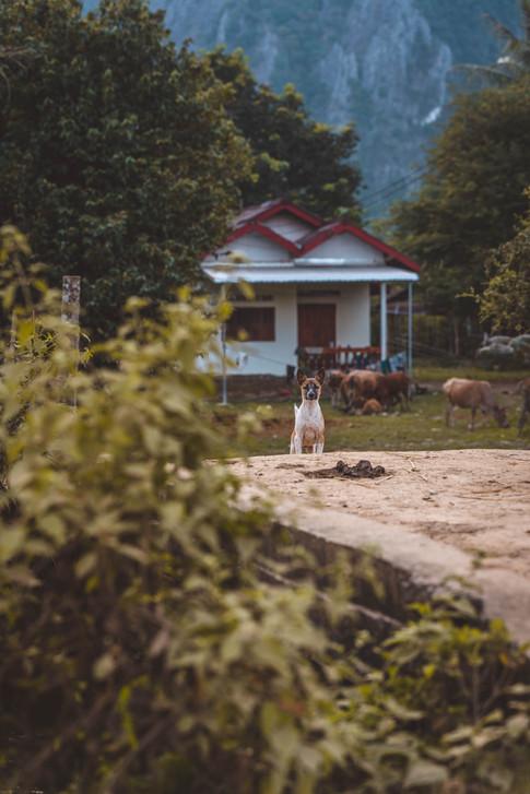 Vang Vieng Mixed itsmelouis.com-3.jpg