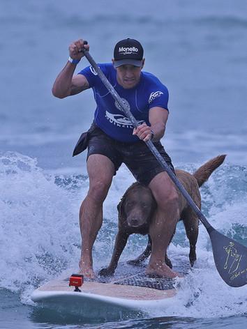 Bono SurfDog SPSurf