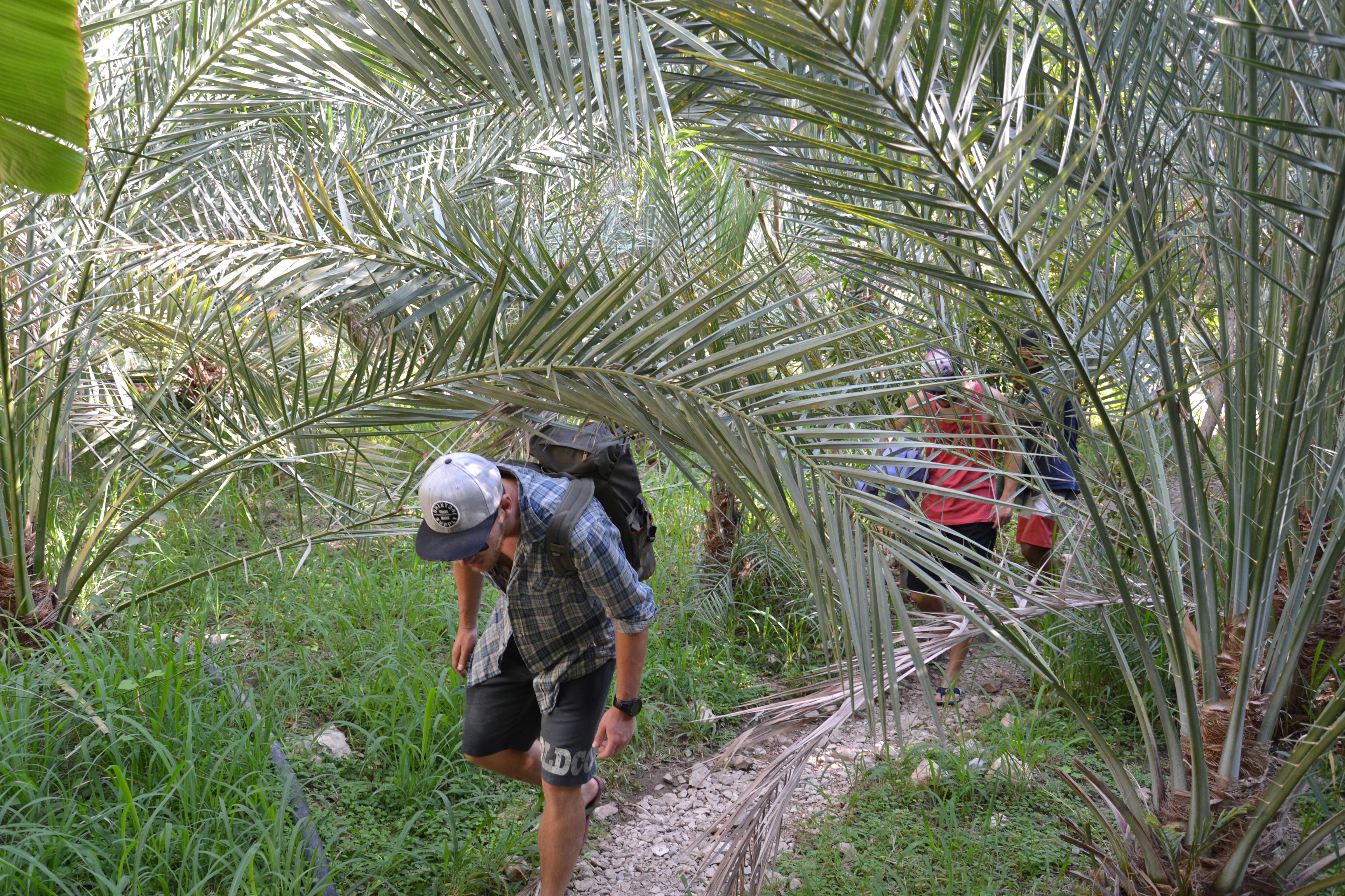 Tag 6 - Sur, Wadi Tiwi - Campen Wadi Tiwi (23)