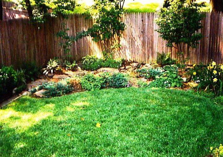 plantings6