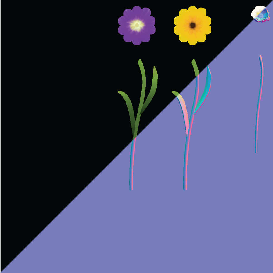 flowers_2-01.png