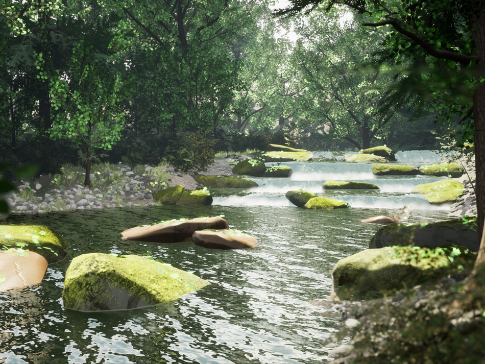 Forest River Environment