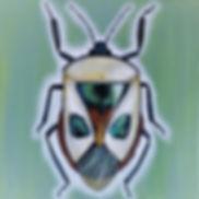 beste versie beetle groen.jpg
