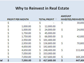 Grow Your Real Estate Investment Fast by Reinvesting