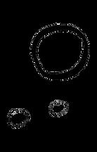 chiara doodle no longer green circles.pn