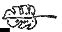 chiara monstera doodle.png