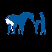 AYHC Logo