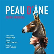 Peau-d-ane-Version-comedie-musicale.jpg