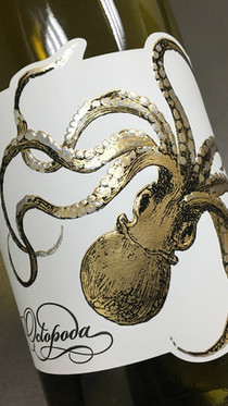 Octopodia