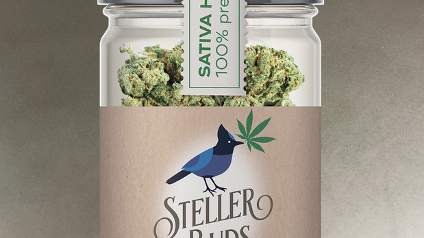 Stellar Buds Jar