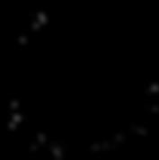 APKC-Logo.png