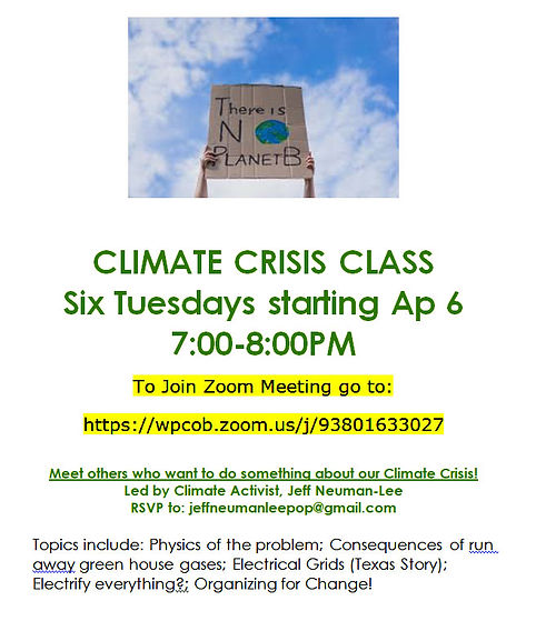 climate crisis poster2.jpg