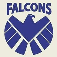 Falcons Logo.jpg