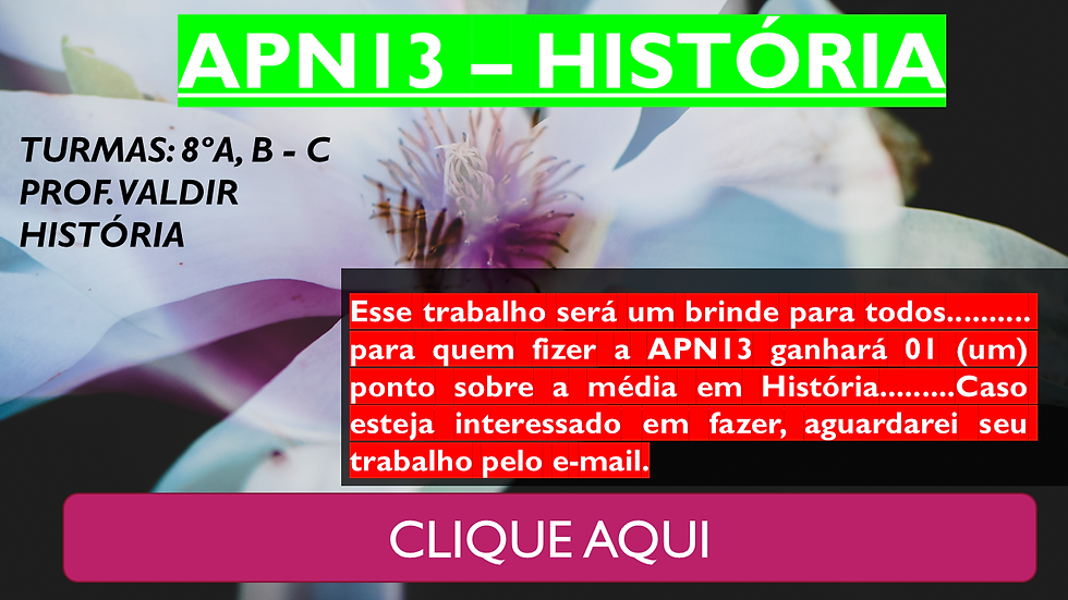 SITE - 8 ANOS.png