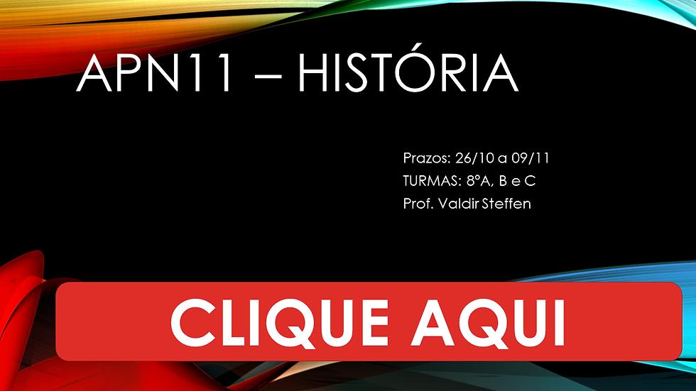 APN11 – HISTÓRIA - 8 ANOS.png