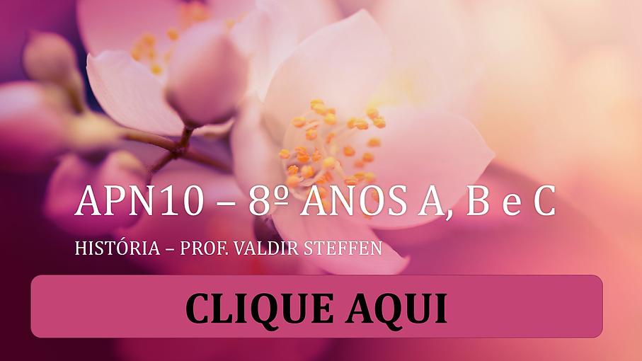 APN10_–_8º_ANOS_A,_B_e_PARA_O_SITE.pn