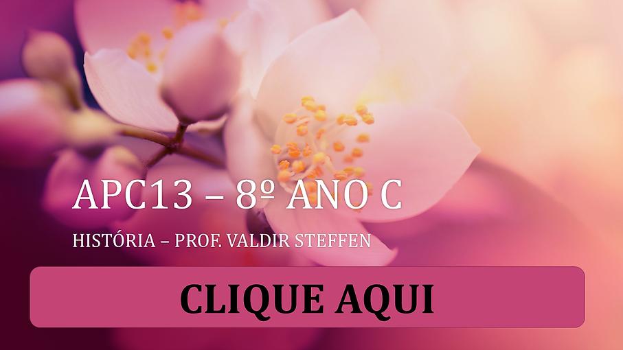 APC13_–_8º_ANO_C_PARA_O_SITE.png