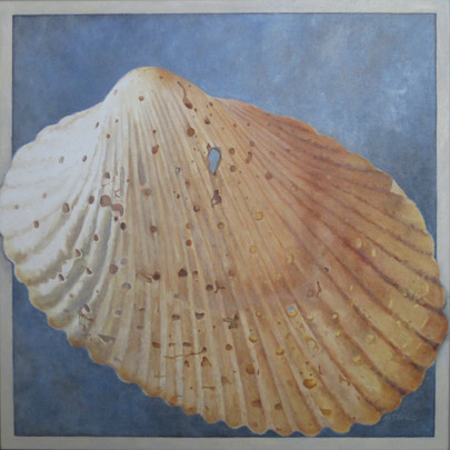 Tumbled Shell