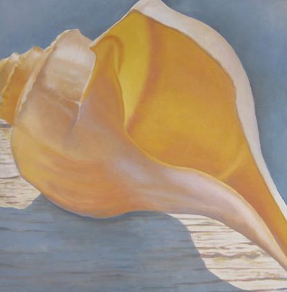 Whelk on Deck