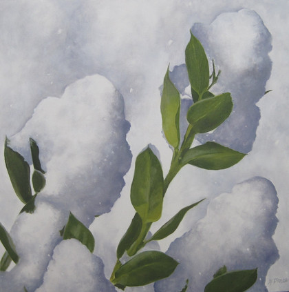 Snowfall on Holly
