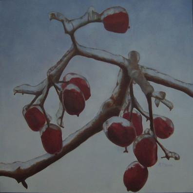 Iced Berries