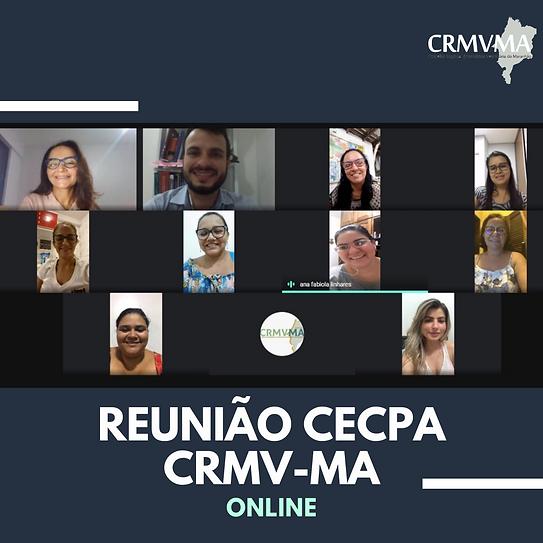 PEÇAS_OFICIAIS_2020_(5).png