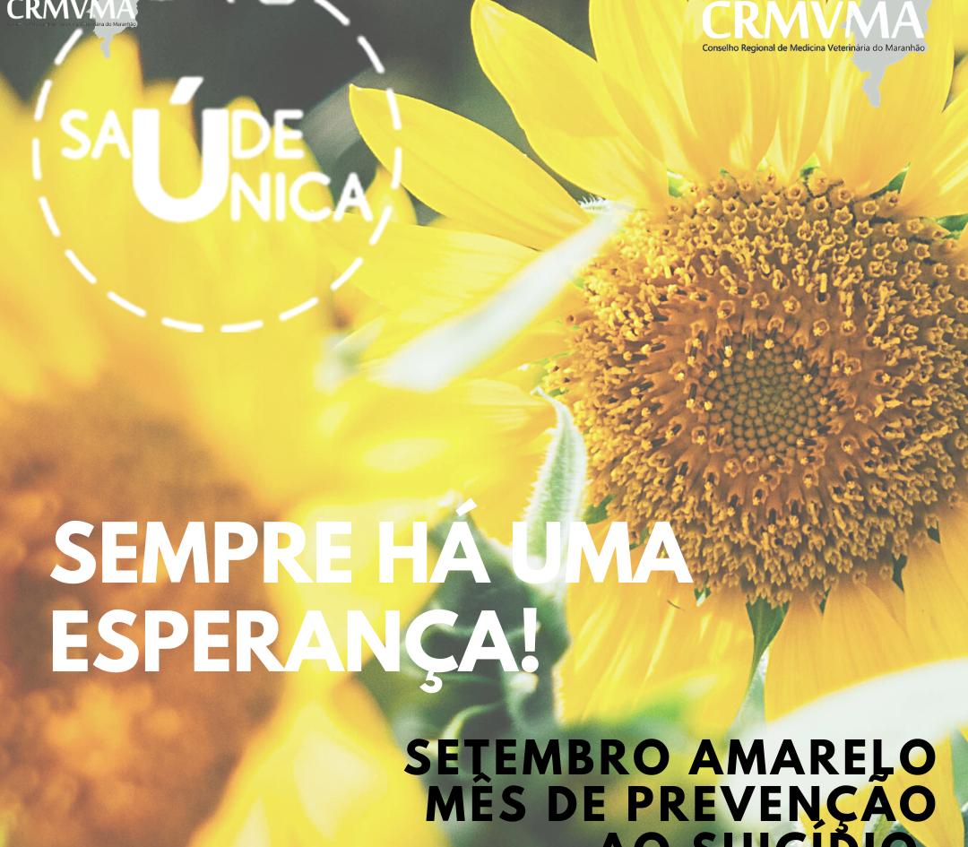 SETEMBRO AMARELO.png