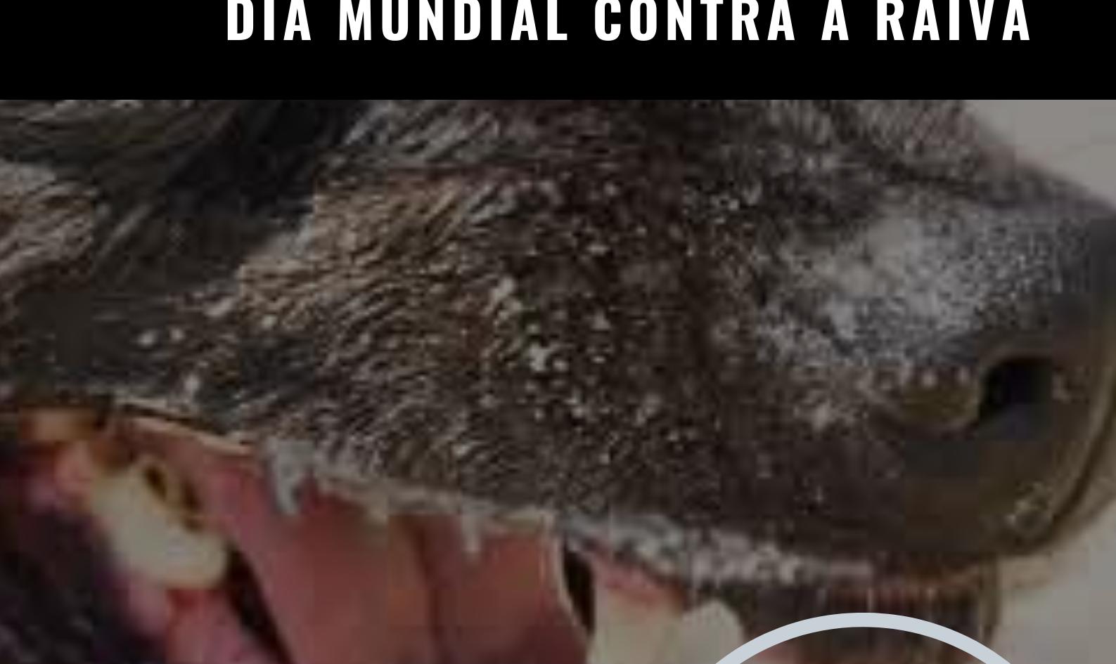 28_09 - DIA MUNDIAL CONTRA A RAIVA (2).p